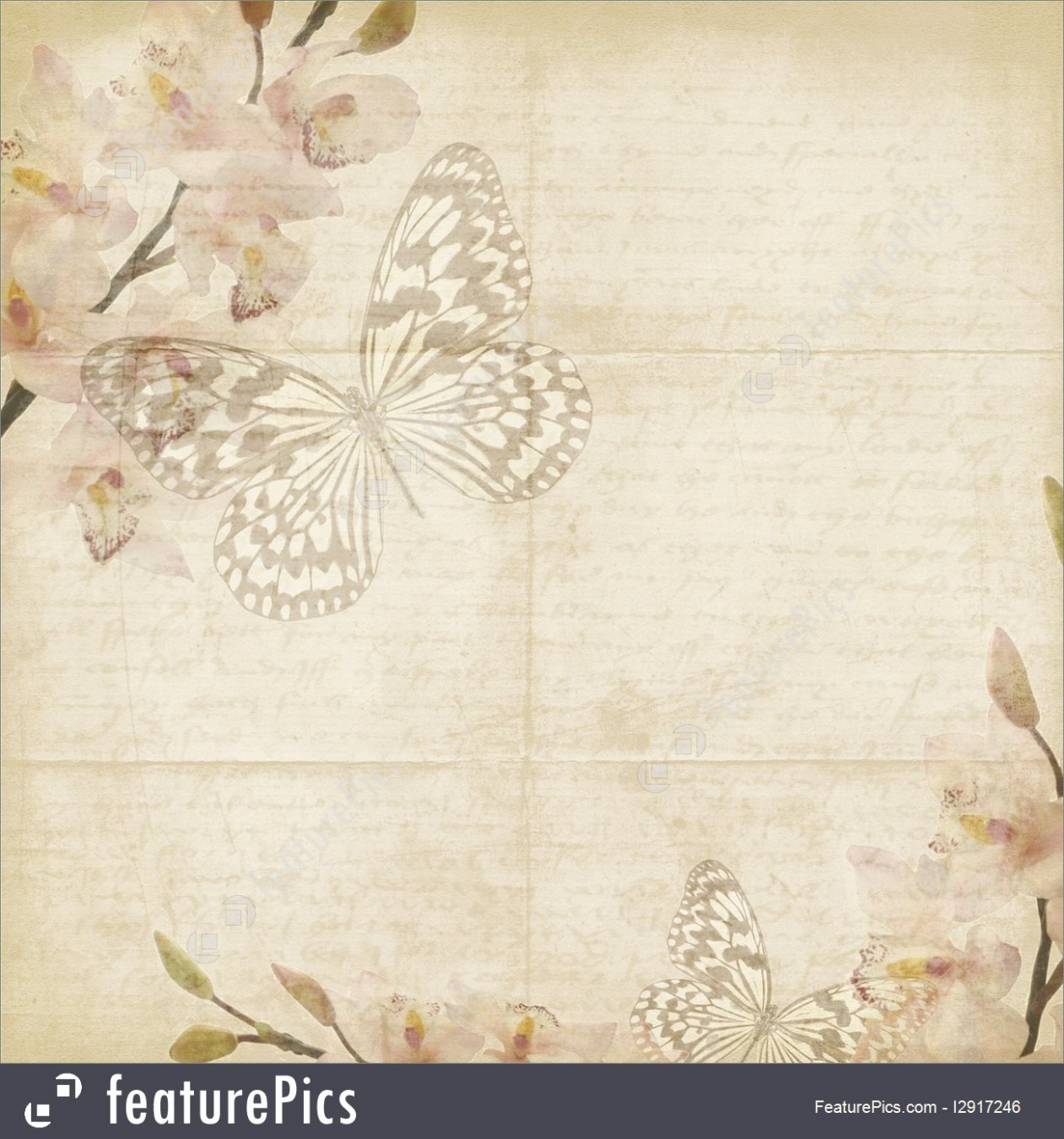template design butterfly  Templates: Vintage Floral Background With Orchids, Space ..
