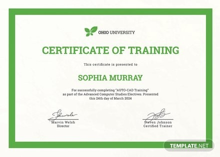 Free Computer Training Certificate Template in PSD, MS ..